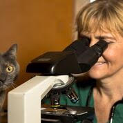Dr Daniel and her laboratory assistant KitKat